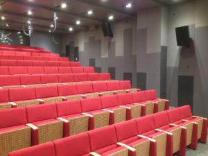 Konferans Salonu Duvar Paneli